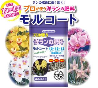 モルコートA4パンフレット_商品メインイメージ.jpg