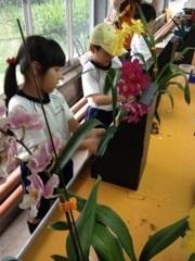 150618_小学校校外学習の様子 (6).jpg